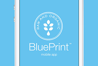 Jennifer tan blue print cleanse blue print cleanse mobile app blueprint cleanse inspiration malvernweather Images