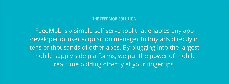 FM_solution